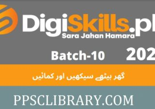 DigiSkills Training Program 2021